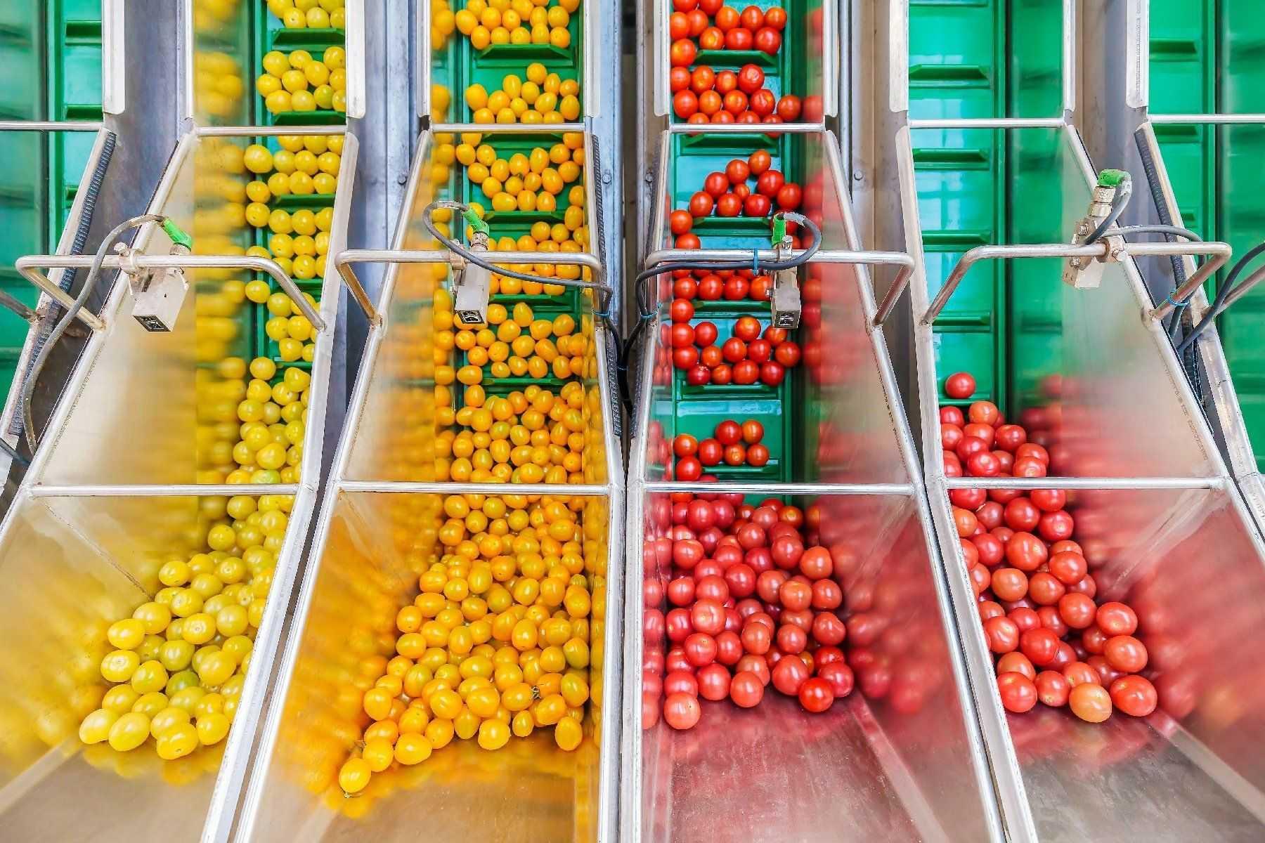 10 Lebensmittelindustrie-2
